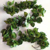 Artificial jungle vine hire melbourne