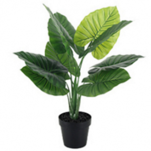 Artificial Deluxe Taro Leaf. Add some life and greenery to your event space with this large-sized artificial leafy potted plant